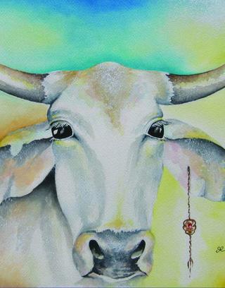 Cow.crop