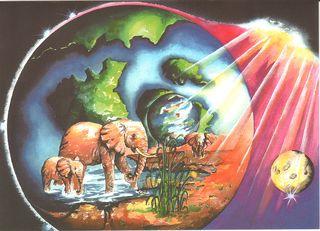 3 Elephants1