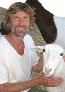 WT.sheep.a